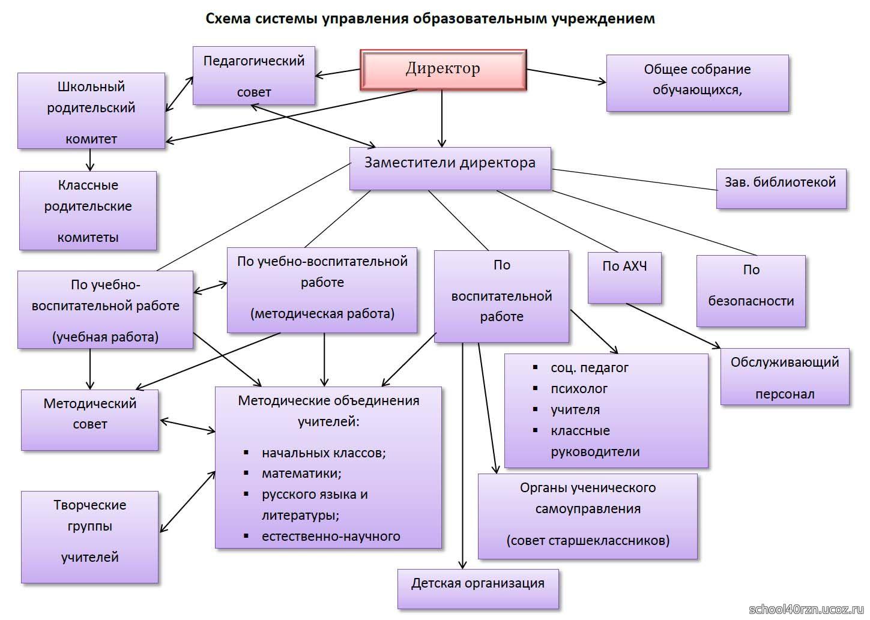 Схема персонала образовательного учреждения